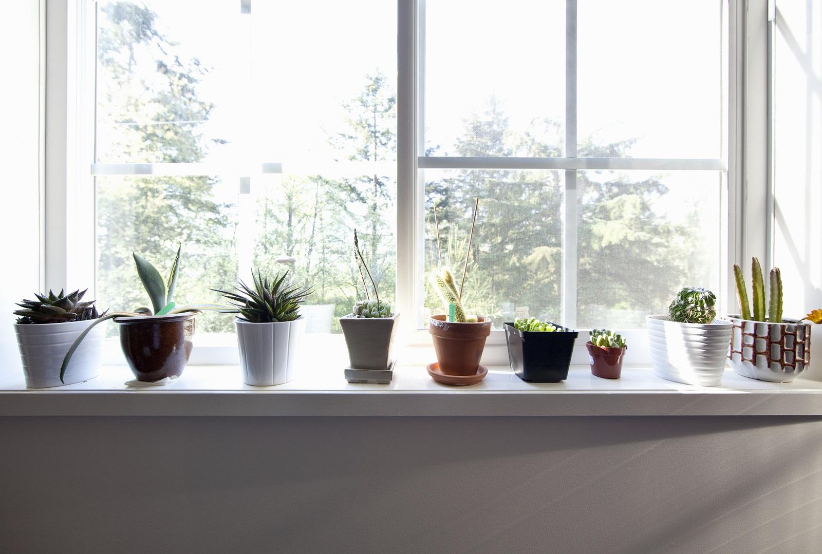 Czy parapety okienne są odporne na promieniowanie UV?